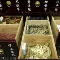 Phát hiện thuốc cổ truyền Trung Quốc có độc