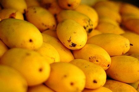 10 lợi ích tuyệt vời từ trái xoài - 3
