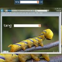 Bing Desktop: Mang cỗ máy tìm kiếm Bing về máy tính