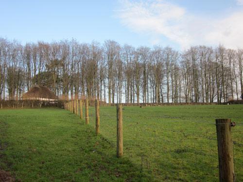 Về thăm ngôi làng bình yên ở xứ Wales - 1