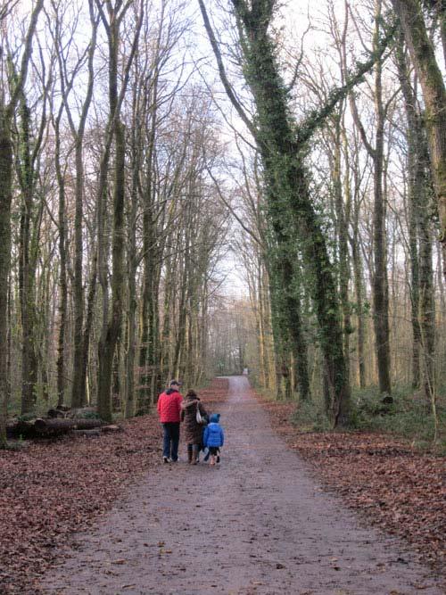 Về thăm ngôi làng bình yên ở xứ Wales - 4