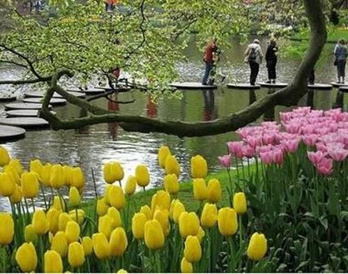 10 khu vườn đẹp đến mê mẩn trên thế giới - 2