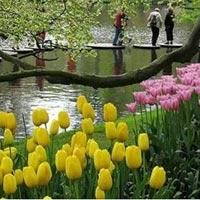10 khu vườn đẹp đến mê mẩn trên thế giới