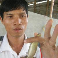 Đổ xô nuôi rắn mối