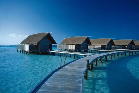 Đảo Cocoa - Maldives, bồng lai tiên đảo - 4