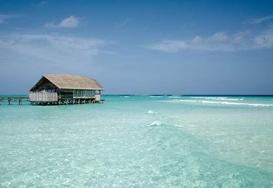 Đảo Cocoa - Maldives, bồng lai tiên đảo - 5