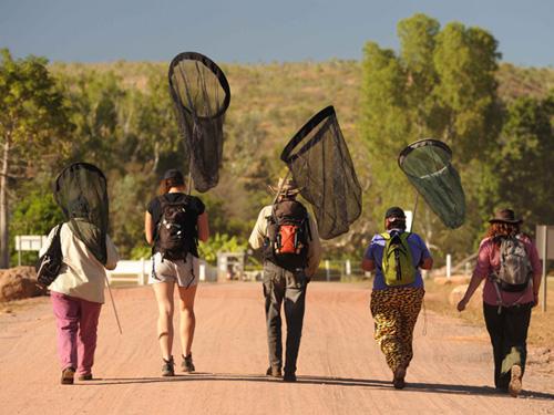 4 lí do để đến thăm Kimberley - nước Úc - 4