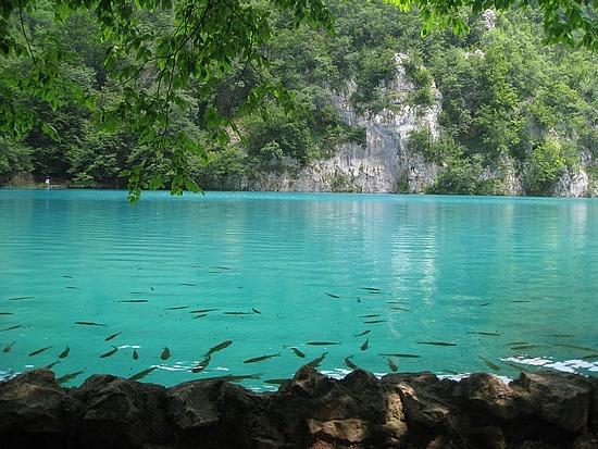 Có một thiên đường ở Croatia mang tên Plitvice - 7
