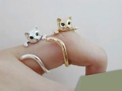 Nhẫn cũng đáng yêu như... mèo - 7