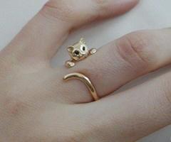 Nhẫn cũng đáng yêu như... mèo - 8