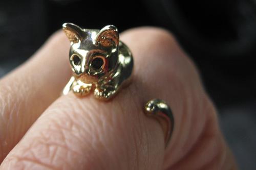 Nhẫn cũng đáng yêu như... mèo - 44