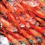 Ẩm thực - Mẹo bảo quản thực phẩm mùa nắng nóng