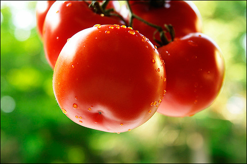 Trị mụn mùa hè bằng mặt nạ trái cây - 3