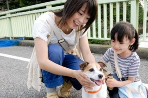Cảm động vì những chú chó trung thành - 9