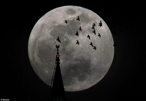 Ngắm siêu mặt trăng trên khắp thế giới - 3