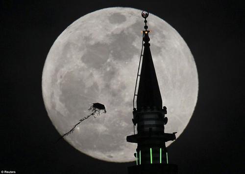 Ngắm siêu mặt trăng trên khắp thế giới - 7