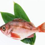 Ẩm thực - Đi chợ mua cá tươi ngon