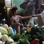 Thị trường - Tiêu dùng - Hà Nội: Dân thờ ơ thông tin cải thảo TQ