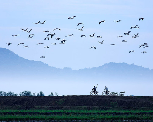 Những khoảnh khắc tuyệt đẹp của Việt Nam trên báo Nga - 5
