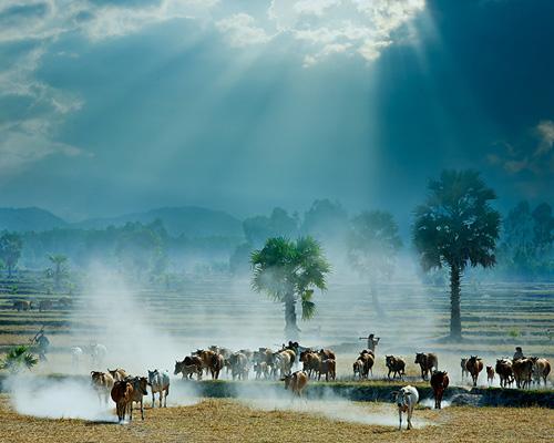 Những khoảnh khắc tuyệt đẹp của Việt Nam trên báo Nga - 7
