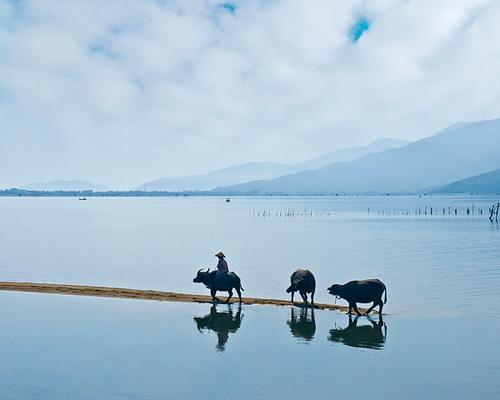 Những khoảnh khắc tuyệt đẹp của Việt Nam trên báo Nga - 17