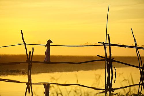 Những khoảnh khắc tuyệt đẹp của Việt Nam trên báo Nga - 27