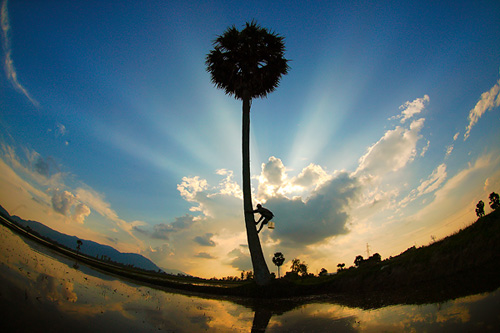 Những khoảnh khắc tuyệt đẹp của Việt Nam trên báo Nga - 29