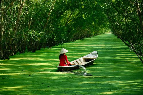 Những khoảnh khắc tuyệt đẹp của Việt Nam trên báo Nga - 30