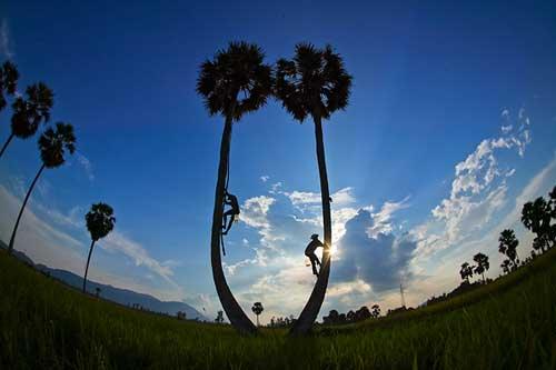 Những khoảnh khắc tuyệt đẹp của Việt Nam trên báo Nga - 3