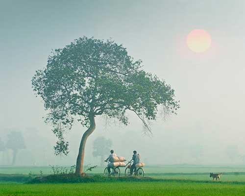 Những khoảnh khắc tuyệt đẹp của Việt Nam trên báo Nga - 22