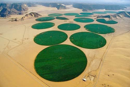 Những hình ảnh sa mạc đẹp lạ - 2