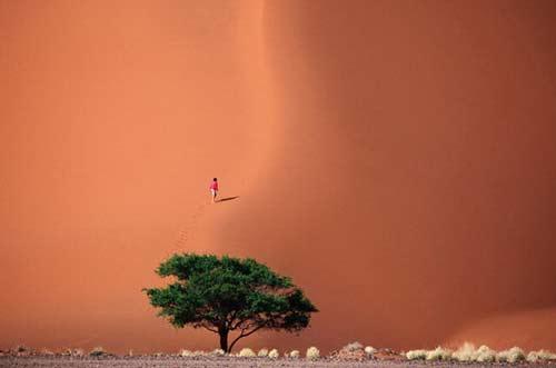 Những hình ảnh sa mạc đẹp lạ - 6