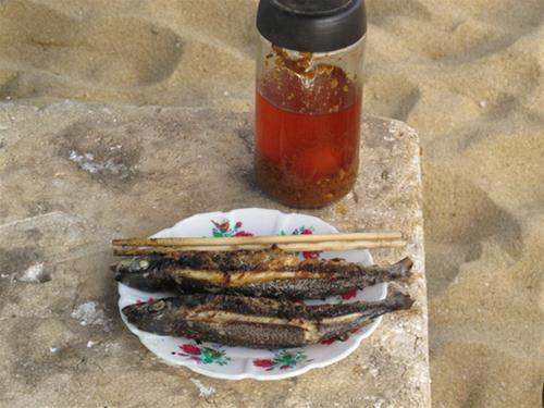 Về bãi Rạng ăn cá chuồn xanh nướng - 3