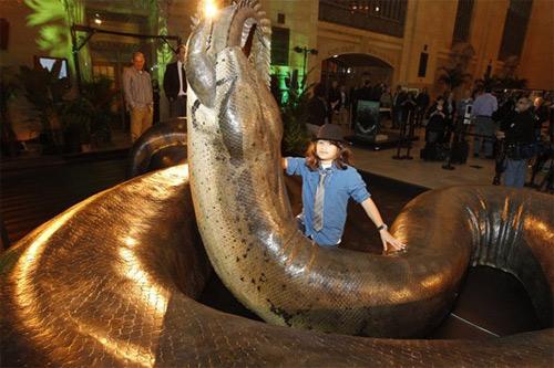 Loài rắn nặng hơn 1 tấn - 3
