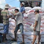 """Thị trường - Tiêu dùng - Lúa gạo """"lật kèo"""" bất ngờ giảm giá"""