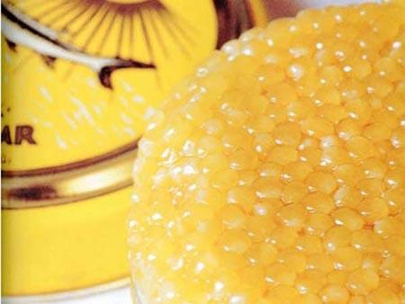 Đại gia: Một miếng ăn giá trăm triệu đồng - 11