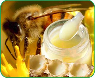 Tác dụng kỳ diệu của sữa ong chúa - 1