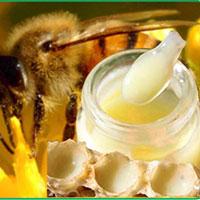 Tác dụng kỳ diệu của sữa ong chúa
