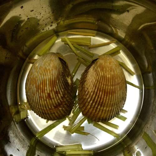 Sò dương nướng mỡ hành thơm nức mũi - 2
