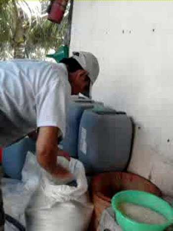 Cận cảnh biến thạch dừa thối nhờ thuốc tẩy - 2