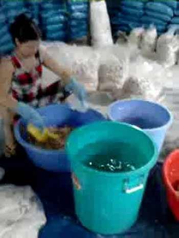 Cận cảnh biến thạch dừa thối nhờ thuốc tẩy - 3