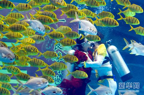 Đám cưới dưới biển siêu lãng mạn - 5