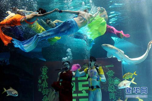 Đám cưới dưới biển siêu lãng mạn - 4