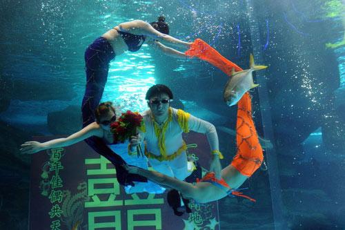 Đám cưới dưới biển siêu lãng mạn - 1