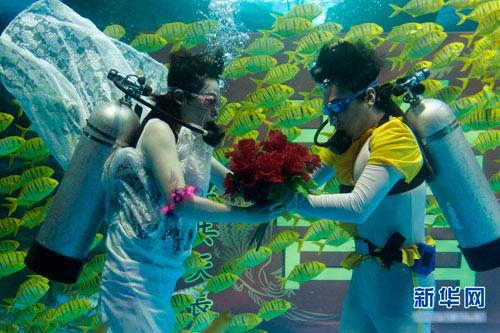 Đám cưới dưới biển siêu lãng mạn - 3