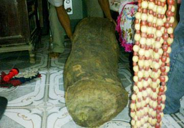 Rợn người nạn cướp gỗ sưa - 3