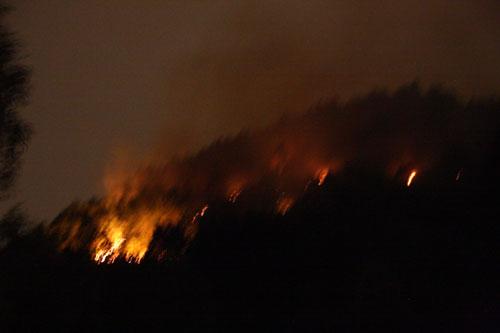 Rừng bốc cháy sau tiếng nổ lớn - 1