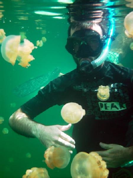 Hồ sứa nước mặn tuyệt đẹp ở Palau - 14
