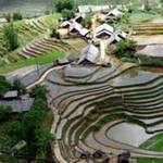 Du lịch - Quyến rũ ruộng bậc thang Tả Van