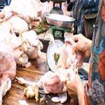 Thị trường - Tiêu dùng - Thịt gà giá siêu rẻ: 30 nghìn đồng/kg